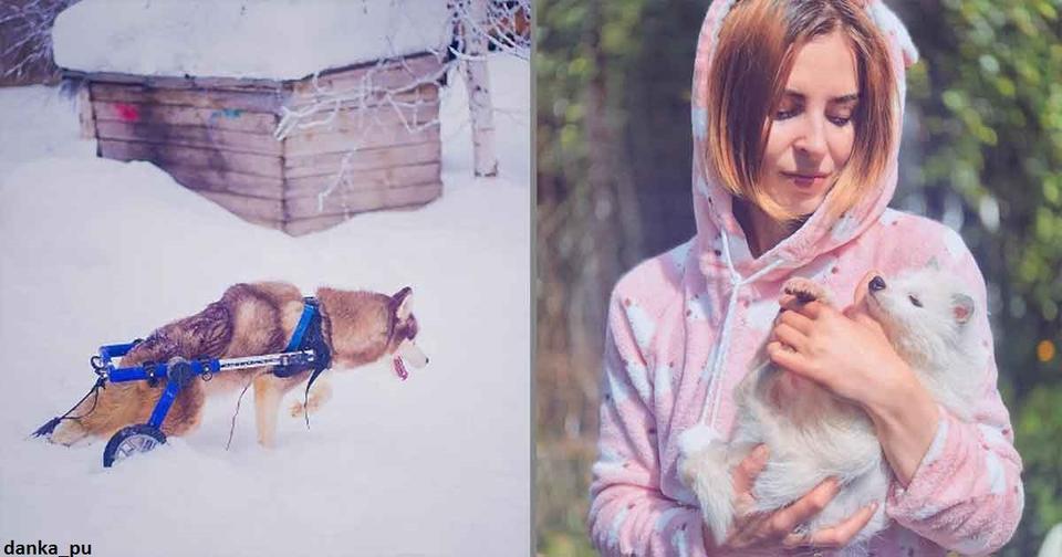 Топовый московский фотограф бросила карьеру, чтобы жить в лесу со 100 больными собаками