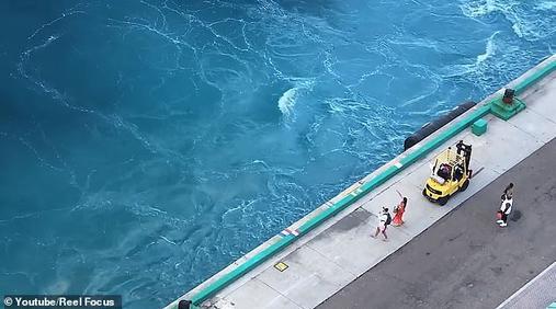 Эти двое опоздали на свой круизный лайнер - и он уехал без них