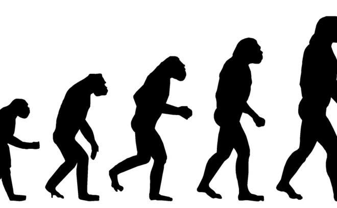 15 способов ответить на любую чушь, которую несут люди, не верящие в теорию Дарвина