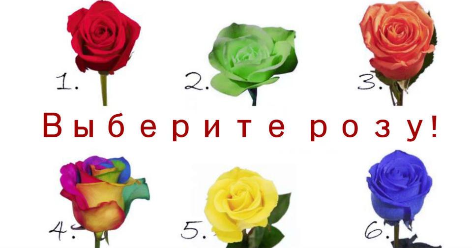 Роза, которую вы выбираете, раскроет секрет вашей личности