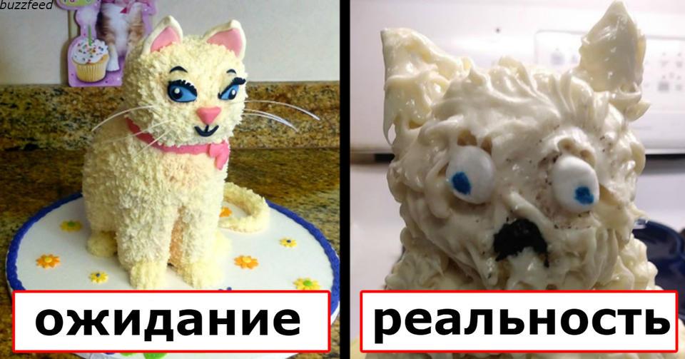 19 раз, когда кто то хотел торт как в интернете, но что то пошло не так