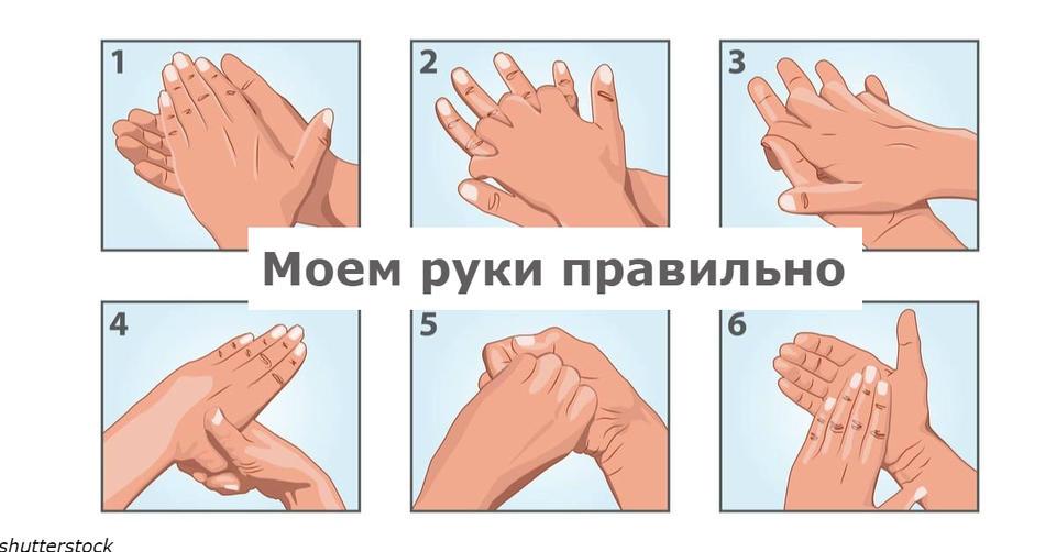 Картинка мойте руки правильно