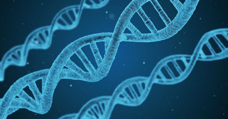 Они все гордились своим происхождением... Пока не сдали тест на ДНК!...