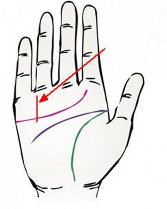 5 линий на ваших ладонях, которые точно указывают: вы обречены разбогатеть