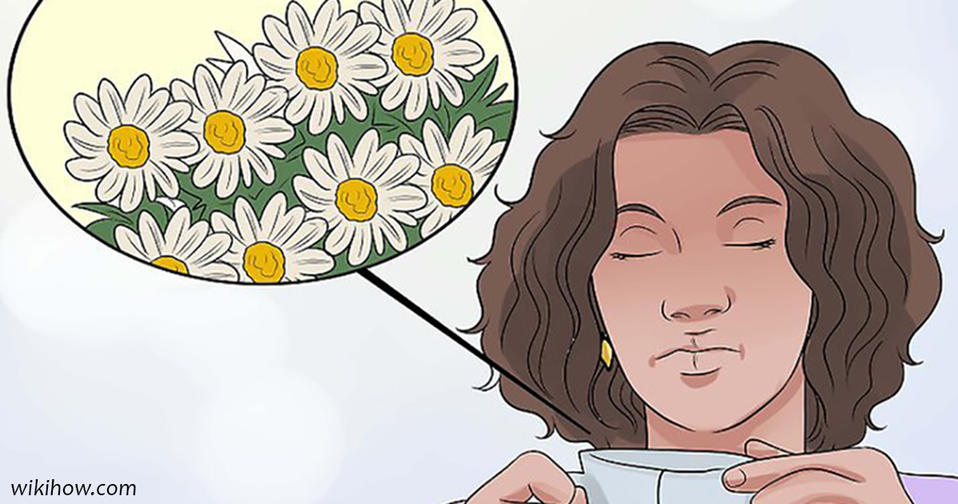 5 трав, которые вполне помогают справиться с тревожностью