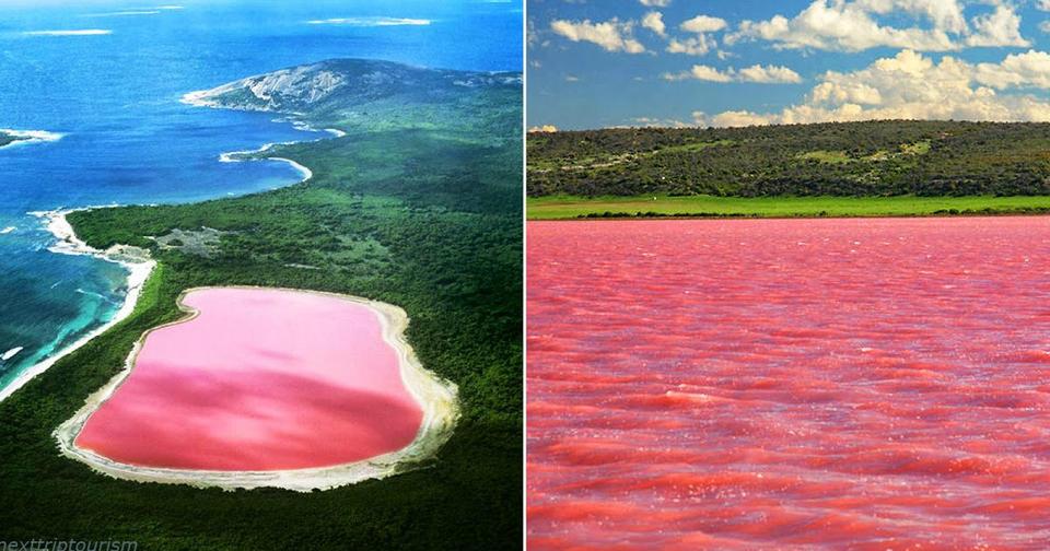В Австралии есть розовое озеро. Как оно таким стало?