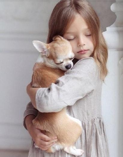 25 раз, когда собаки показали, что такое настоящая безусловная любовь
