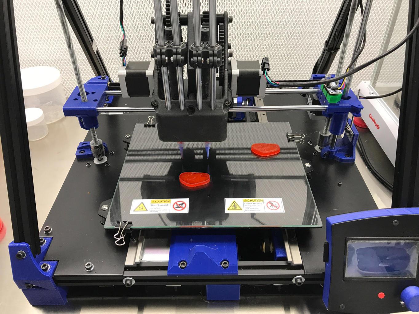 В Италии создали 3D-принтер для печати веганских стейков