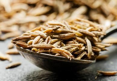12 полезных специй и трав, которые обязаны быть на каждой кухне