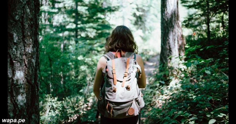 4 совета на случай, если когда то вы заблудитесь в лесу