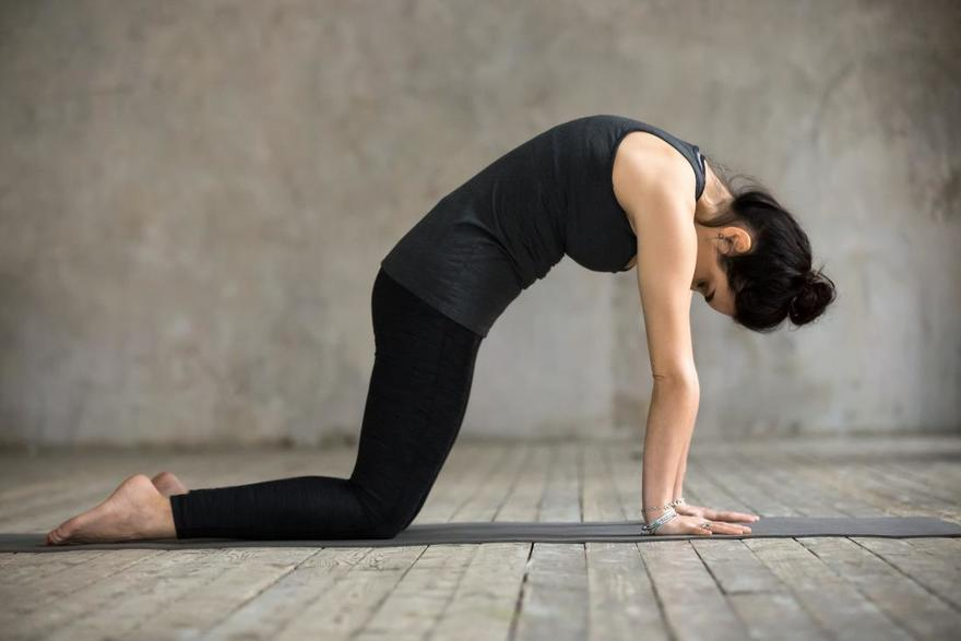 10 упражнений, чтобы укрепить нижнюю часть спины и забыть о болях в пояснице