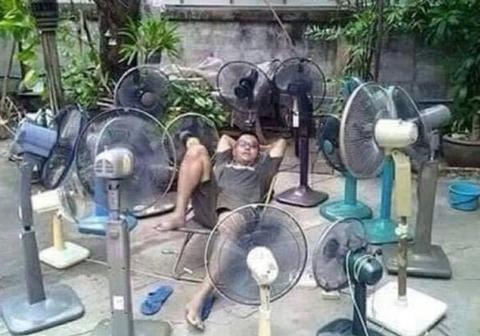 15 веселых фото, которые показывают, что такое настоящая жара