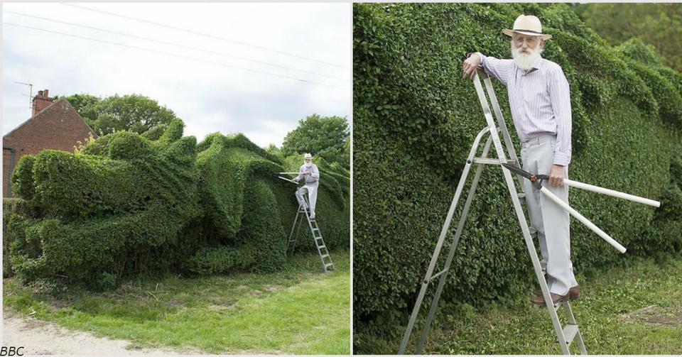 Дед провел 10 лет, превращая изгородь в гигантского дракона