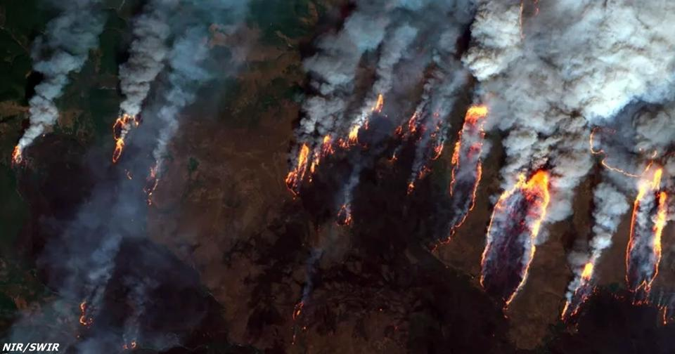 Из за пожаров в Сибири может наступить глобальная катастрофа! Вот почему