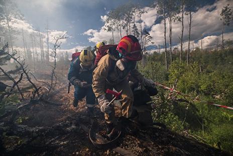 Из-за пожаров в Сибири может наступить глобальная катастрофа! Вот почему