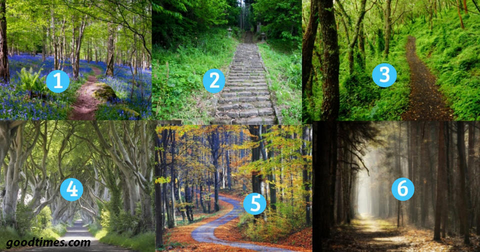 Выберите дорогу и мы расскажем о том, по какому пути в жизни вы идете