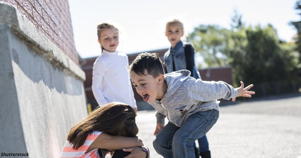 В Украине за буллинг школьника родителям выписали штраф на 100 000 грн.