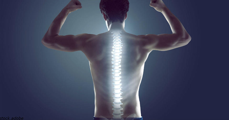 5 лучших способов укрепить мышцы спины и позвоночника