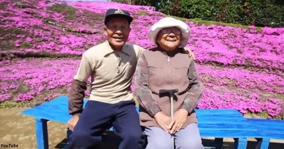 Муж потратил годы, высаживая цветы для ослепшей жены: ей нравится, как они пахнут
