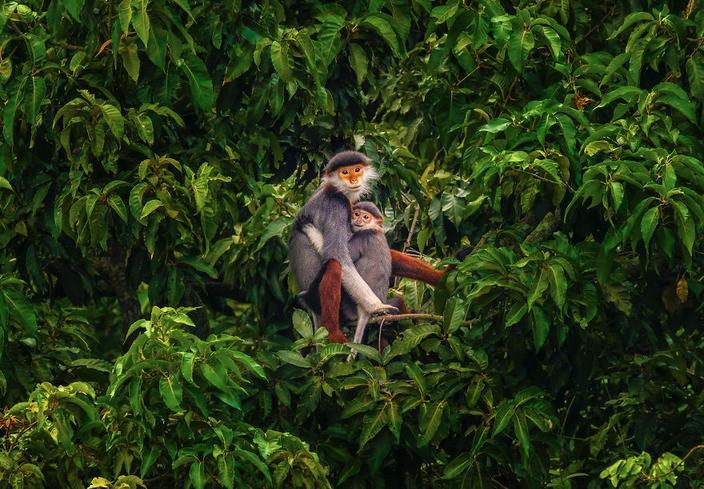 Фотографов со всего мира попросили показать, что означает любовь. Вот результат