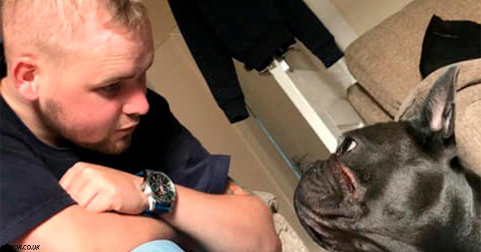Собака умерла через 15 минут после того, как её хозяин проиграл свою битву с раком