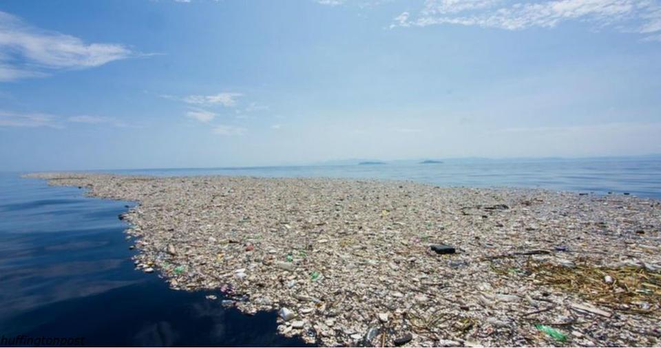 Человечество ″зас..ало″ 60% мирового океана. Исследование