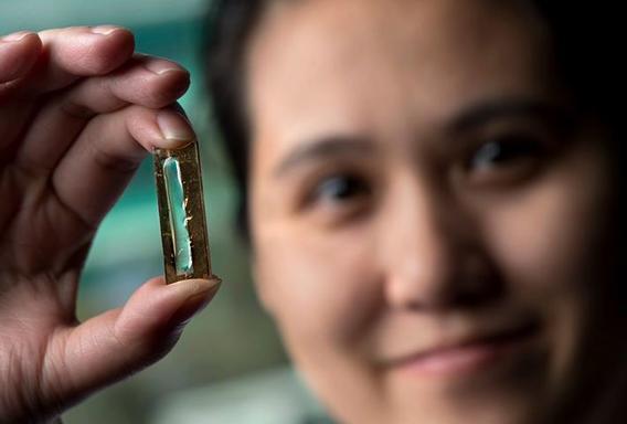 Студентка случайно изобрела аккумулятор, который может работать 400 лет