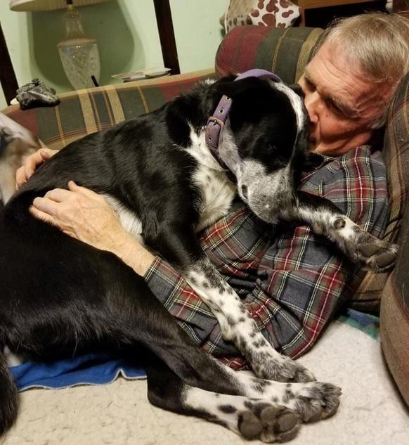 20 человек, которые не хотели домашних животных, а теперь без них не могут
