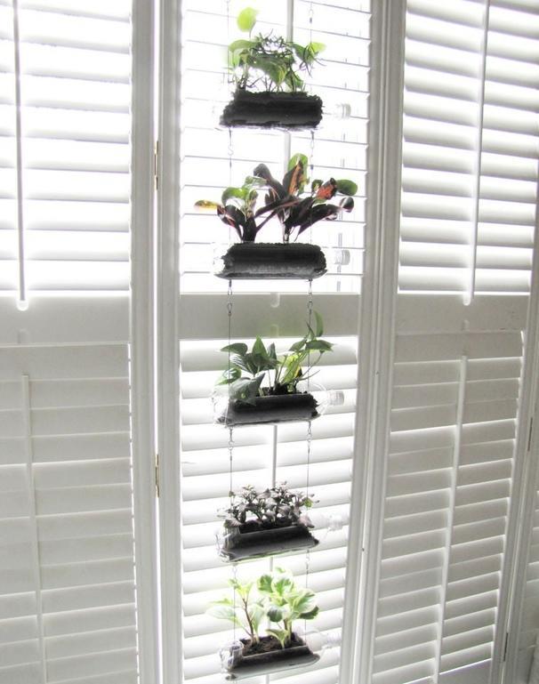 Мой дедушка обожает выращивать комнатные растения: он организовал вертикальный сад из пластиковых бутылок у себя дома