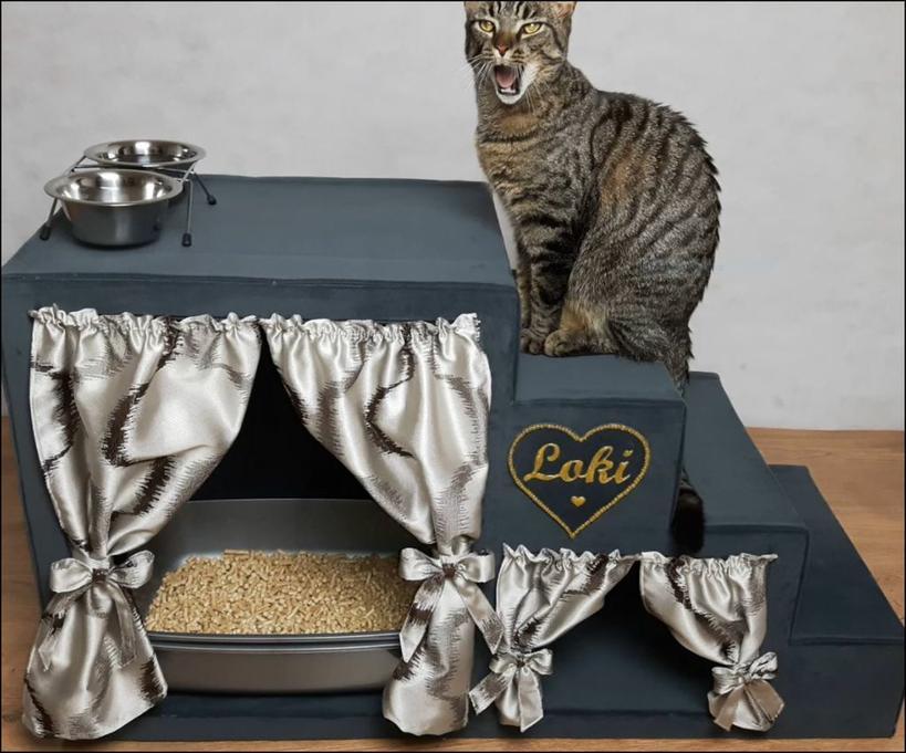 У нашего кота появился королевский домик с комнаткой для туалета: удивительно, но мы сделали его из картона