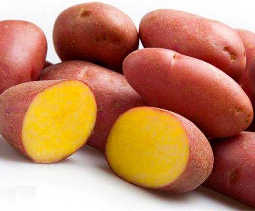 Подруга привезла рецепт из путешествия по Германии: картофельные хрустящие оладьи. Вкусное и простое блюдо
