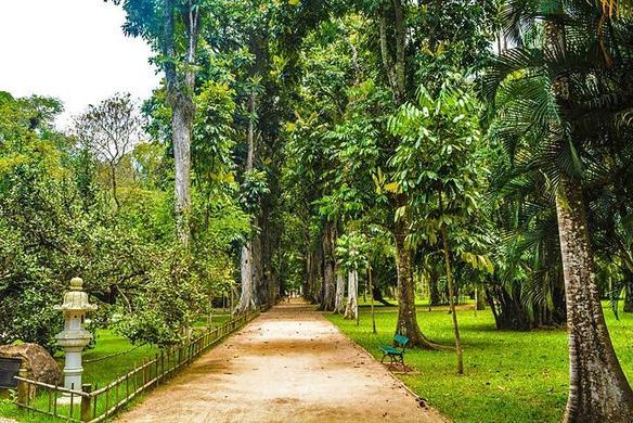 Лучшие однодневные поездки из Рио-де-Жанейро, а также малоизвестные достопримечательности в городе