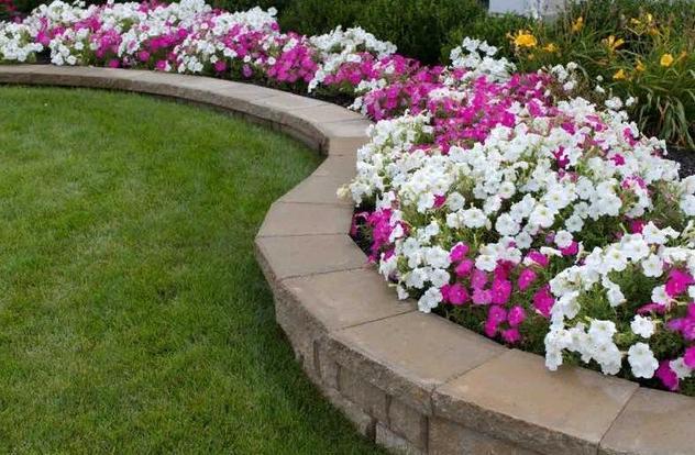 10 вариантов интересных цветочных композиций для клумбы: палитра, дерево и другие