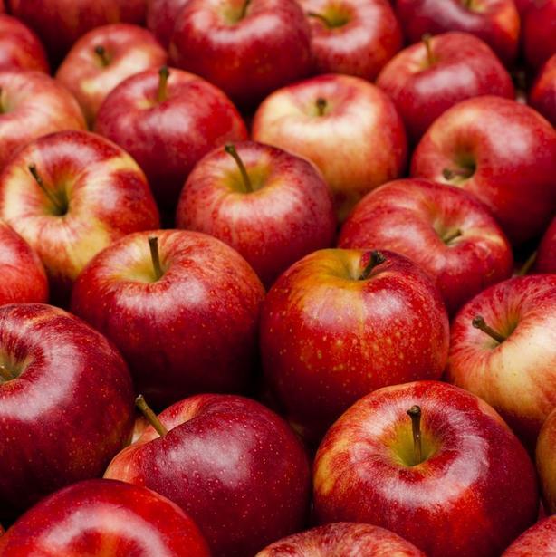 Морковка, капуста и яблоки не портятся несколько месяцев: 12 кухонных лайфхаков, которые помогут продлить  жизнь  овощей и фруктов