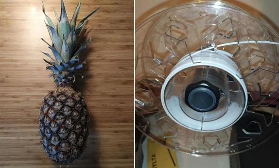 Кто проживает на дне океана? : чтобы отвлечь детей от просмотра мультиков, предложите им смастерить дом Губки Боба из настоящего ананаса