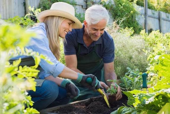 Широкополая шляпа, вертикальная посадка и другие лайфхаки, которые упростят жизнь садоводам