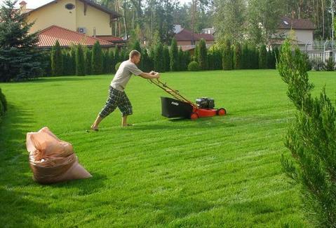 Красиво и эффективно: круглые грядки для кабачков из скошенной газонной травы
