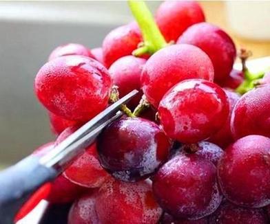 Просто промыть виноград водой – это все равно что съесть яйца насекомых. Чтобы ягоды стали чистыми, нужны соль, уксус и мука
