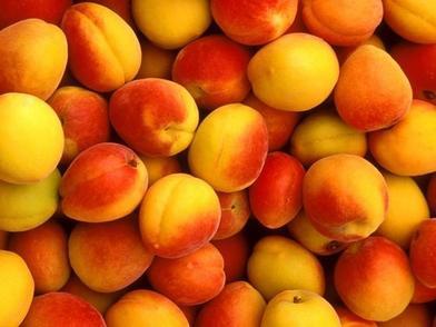 Готовим абрикосовый сок на зиму: не требуется сахара и особенных приспособлений - только плоды и вода