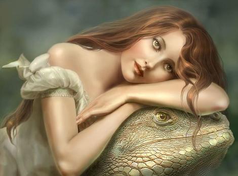 Появление ящерицы во сне предвещает встречу с врагами, будьте готовы закрепить свои позиции