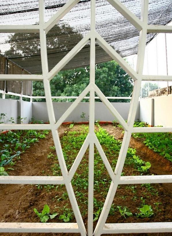 Во время ремонта дизайнеры предложили хозяину дома создать огород прямо на террасе. Пришлось попотеть, но и интерьер, и плантация получились на загляденье