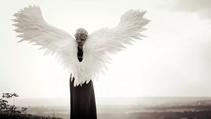 Козероги, решайте только важные вопросы: советы ангела-хранителя на 2021 год каждому знаку зодиака