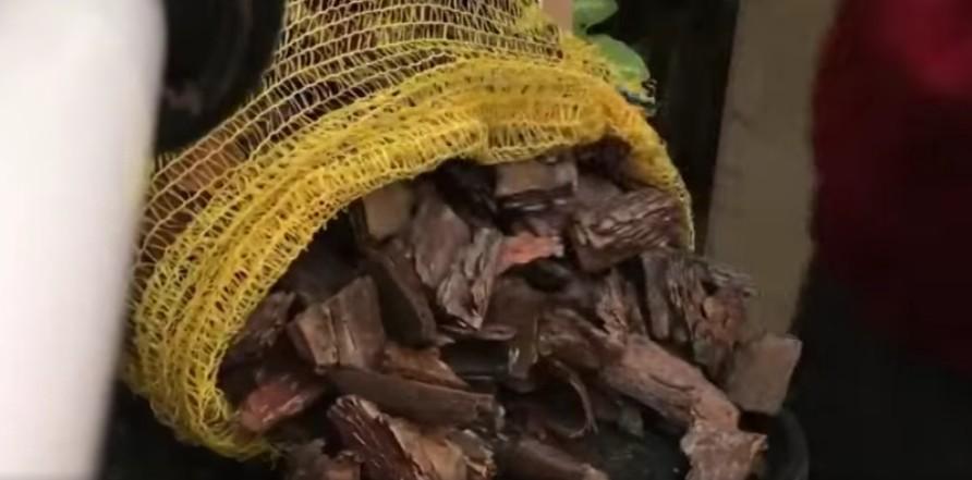 Где взять кору для орхидей и способы ее обработки