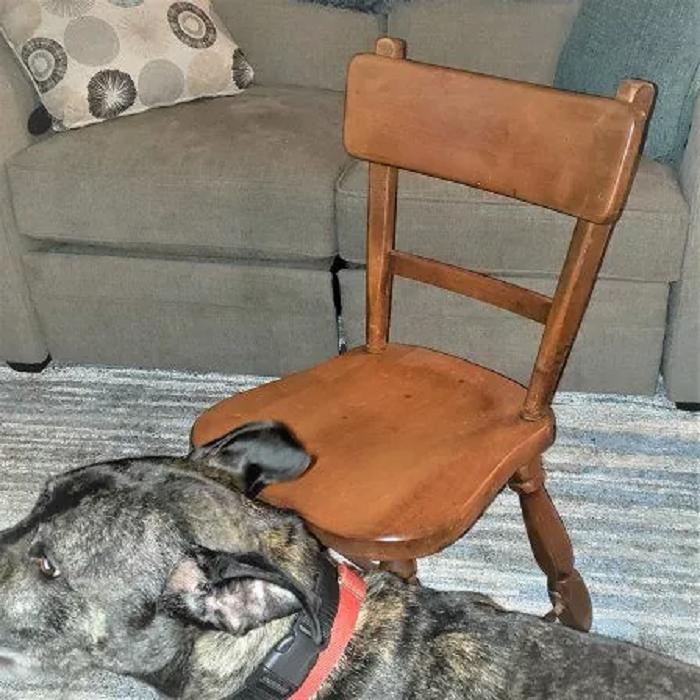 Старый стул не вписывался в интерьер нашего дома, и я решила его преобразить: результат просто невероятен