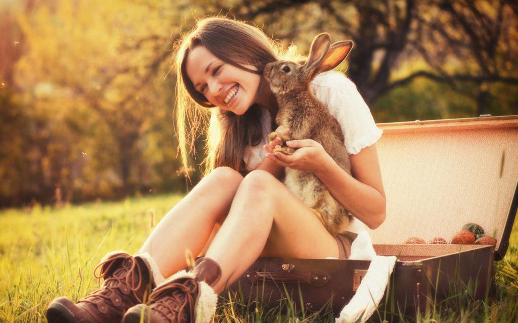 Щелкает зубами, покусывает и не только: как понять, что кролик вас любит