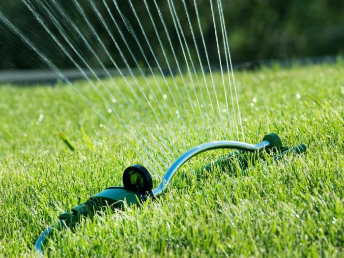 Не следует поливать чаще, чем обычно: 7 советов по уходу за газоном в жару