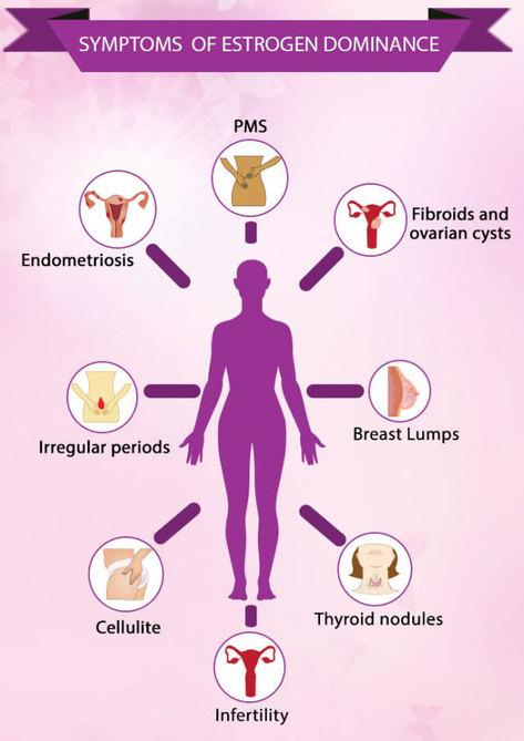 Сексуальность женщин эстрогены
