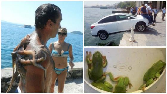 Отпуск изАда: фотографии изтурпоездок, вкоторых что то пошло нетак