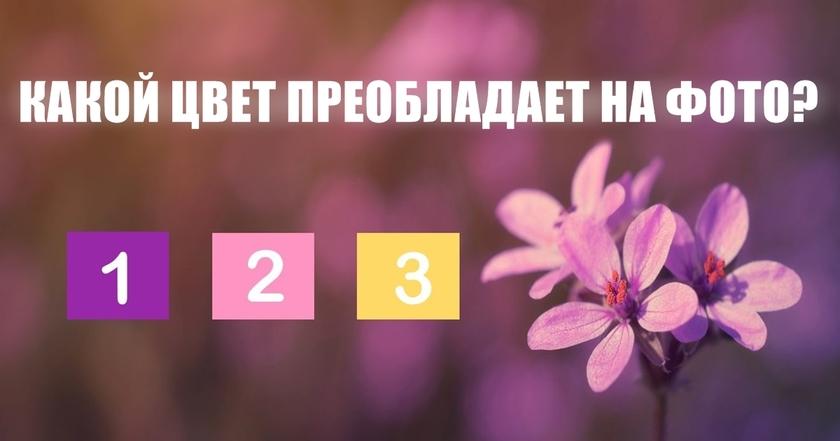 Вот красивый тест, чтобы узнать, с каким цветом у вас есть духовная связь!