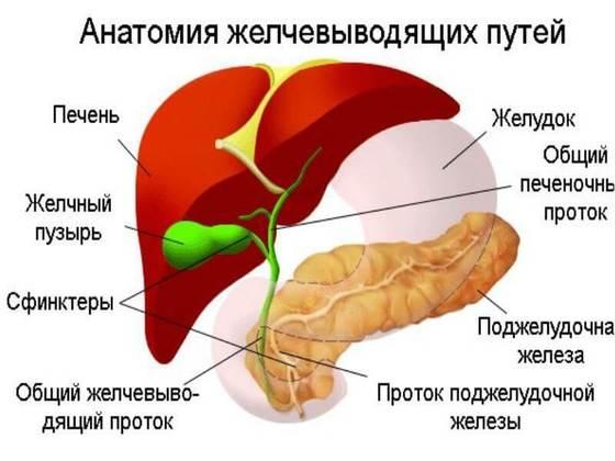 Боль в суставах, сердце суставы лечение внутримышечно
